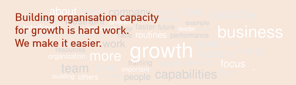 Building organisation capacity for growth is hard work. We make it easier.